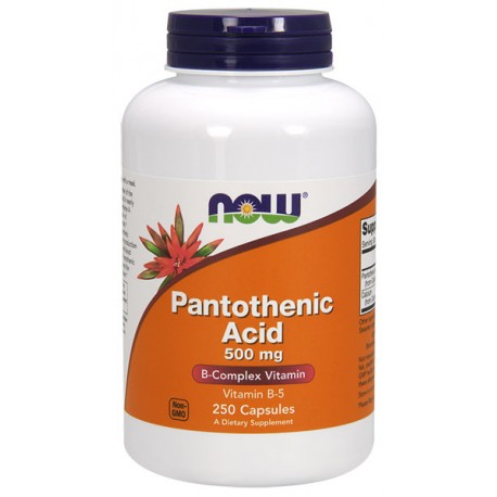 NOW FOODS Pantothenic Acid 500mg 250kap