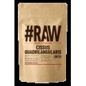 RAW Cissus Quadrilangularis 250g