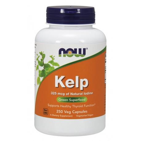 Kelp - Jod z wodorostów